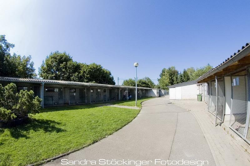 Www Tierheim Pforzheim